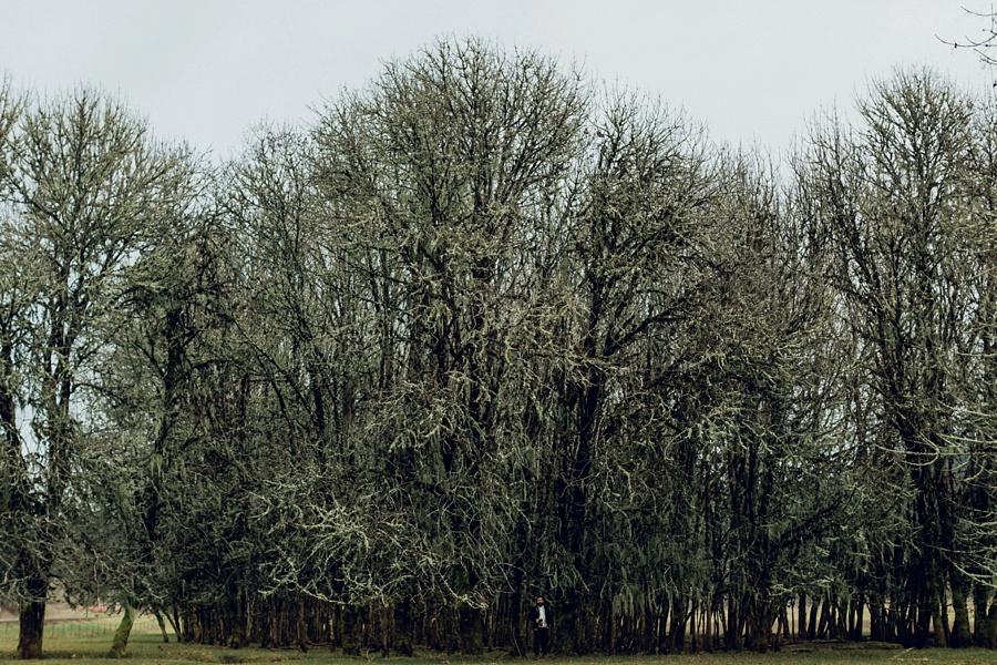 The Hoskins; The Hoskins Photography; Aaron Hoskins Photography; Outdoor Photography: Oregon Photographer; Lost/Discovered; Oregon Landscape; Oregon Coast; Oregon Forest; Travel Photography